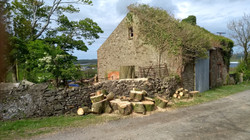 Firewood Splitting Service in North Wales