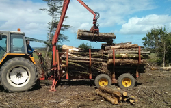 Forestry Services in Betws y Coed