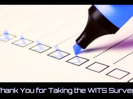 Thank You for Taking the WITS Survey!