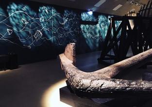Strandingsmuseum Part 1