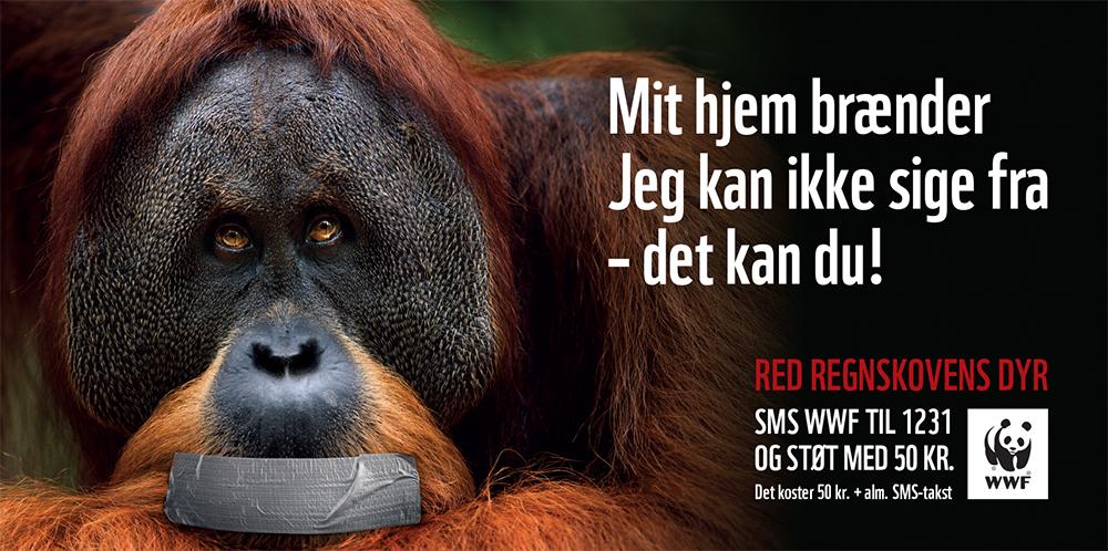 DanielleBrandtDesign_WWF_ORANGUTANG