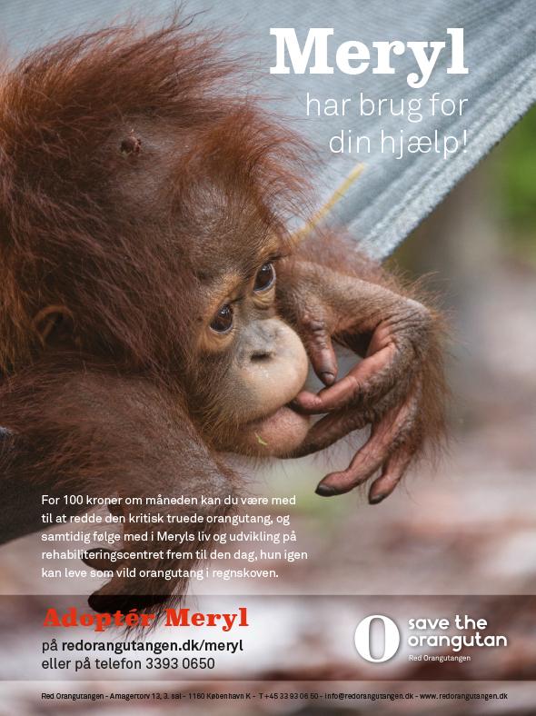 Red Orangutangen Danielle Brandt Design