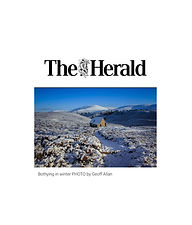 the Herald button web.jpg