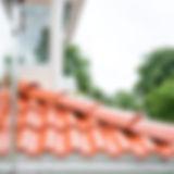 EvelinasFoto-Roofia-Gottskär1eJuli03.jpg
