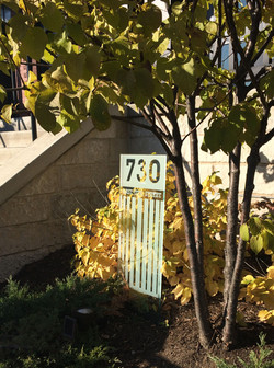 Yard sign with autumn colors 17th street.jpg