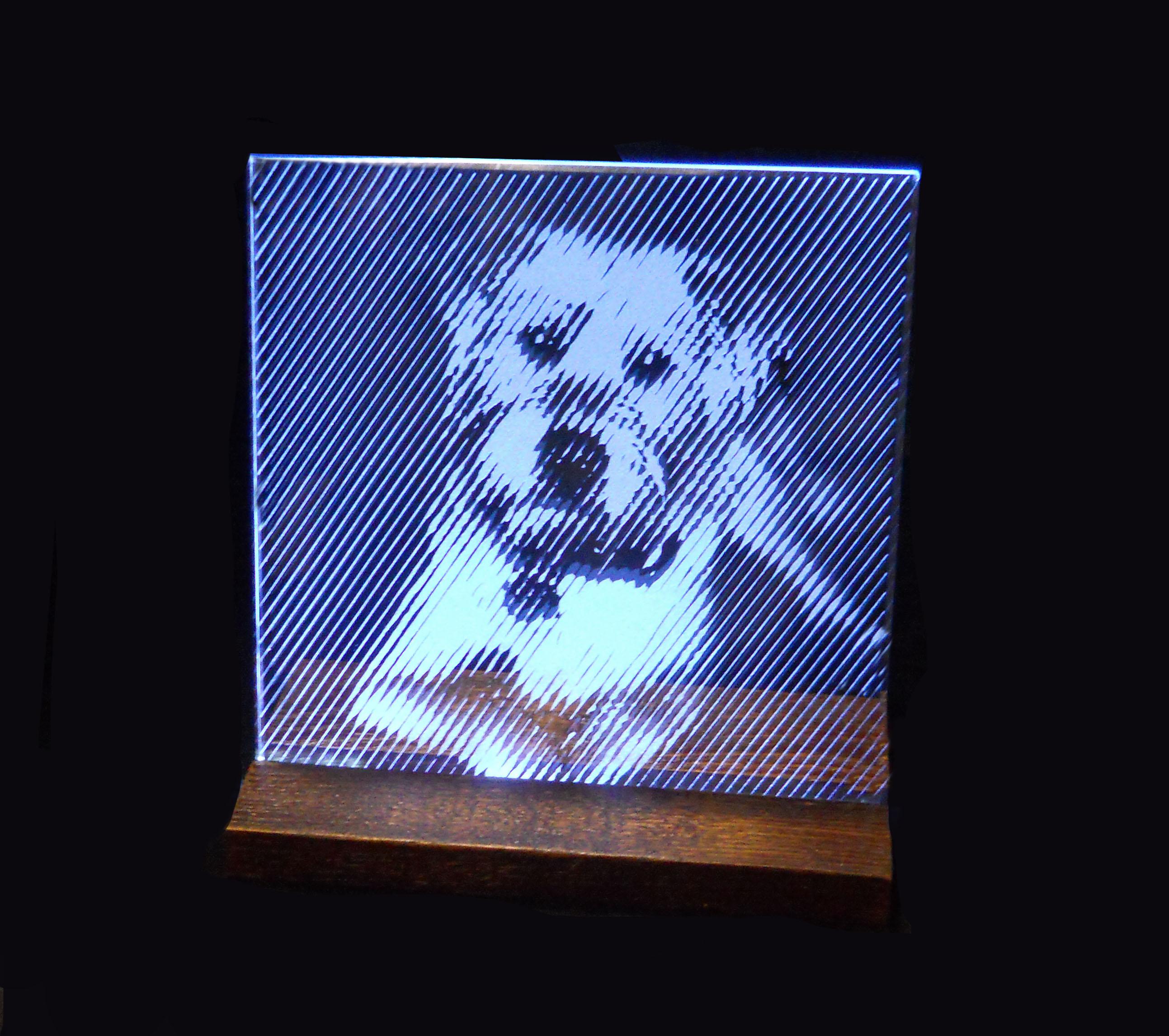 Corky on glass.jpg