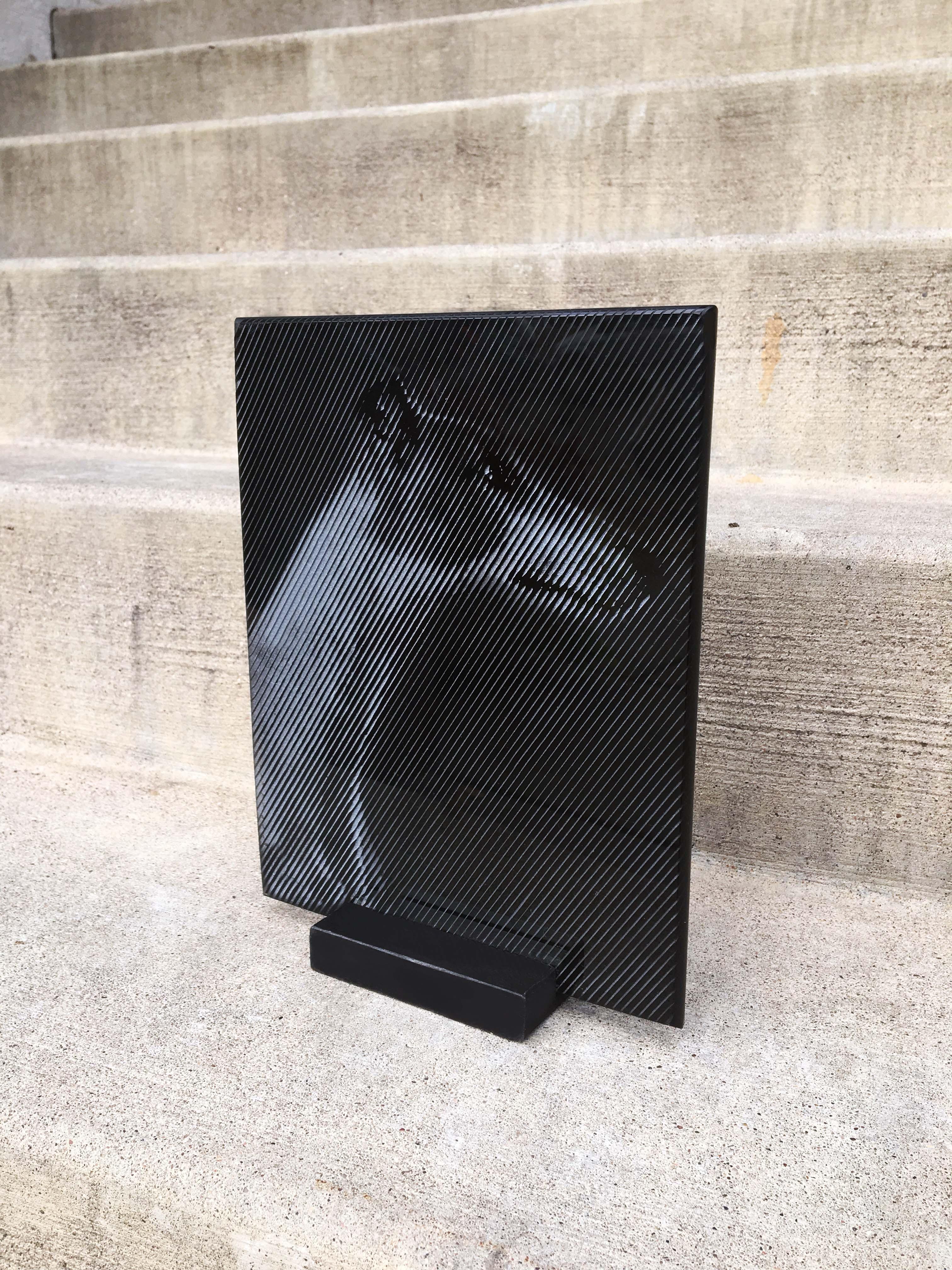 dog on glass