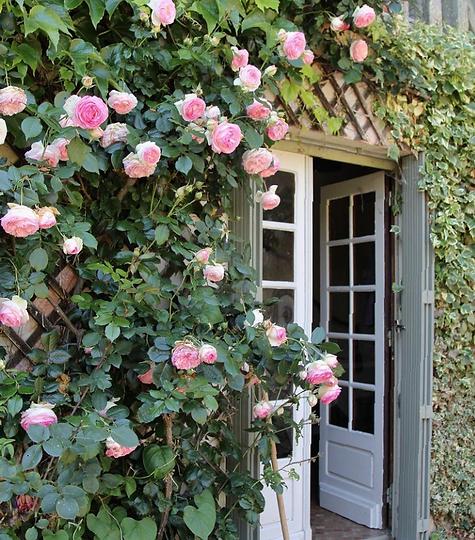 Les Jardins de Clogs............png