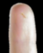 Finger Shot.png