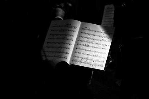 concert laco 2.jpg