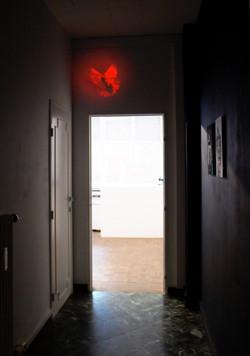 pigeon-vole-jozsa-galerie