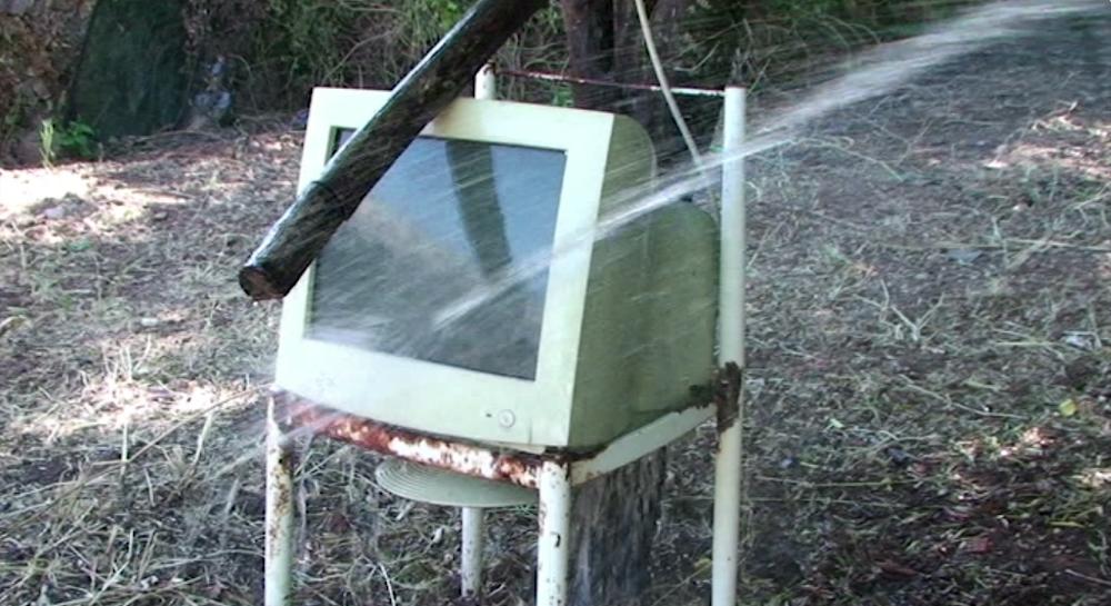 Lagutrop-ordinateur-plante