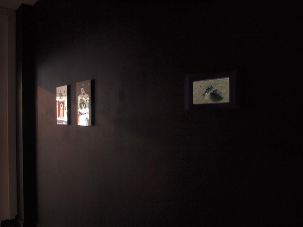 limace-miroir-espace-noir