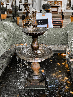 Fountain at Hans Herzog