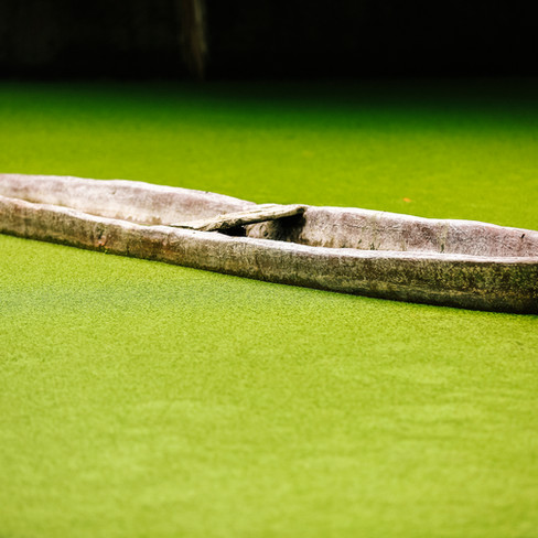 Canoe in a Moss Pond
