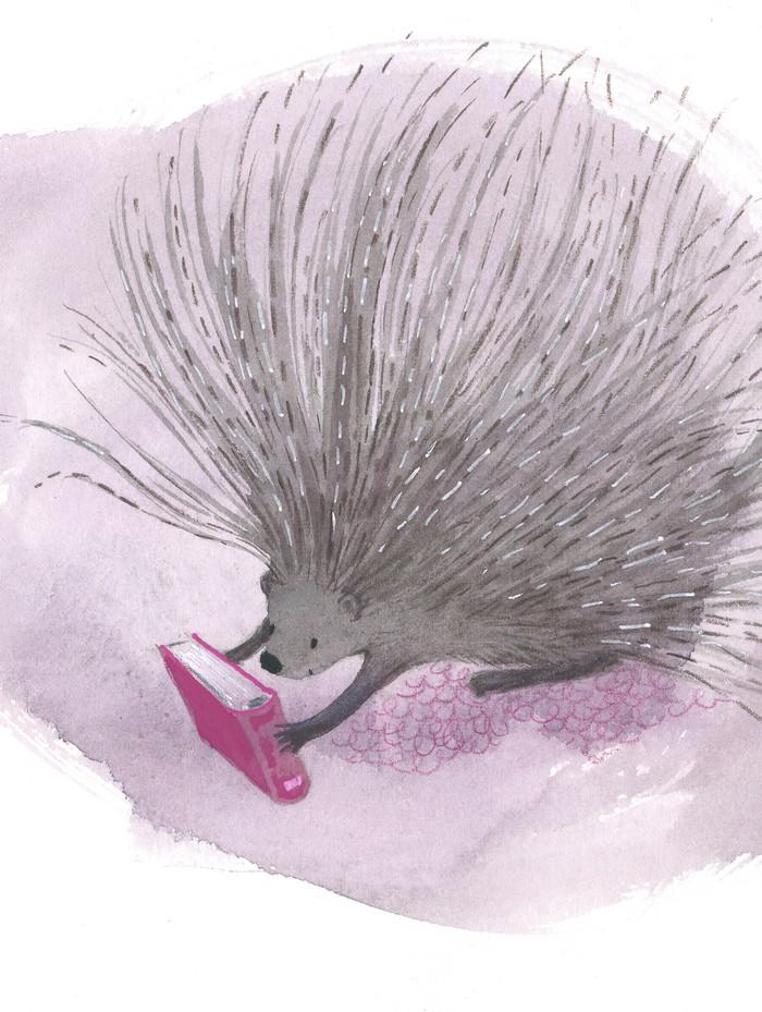 porcupine loves books