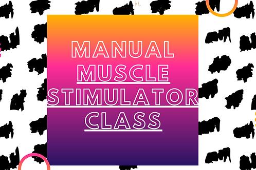Online Manual Muscle Stimulator Class
