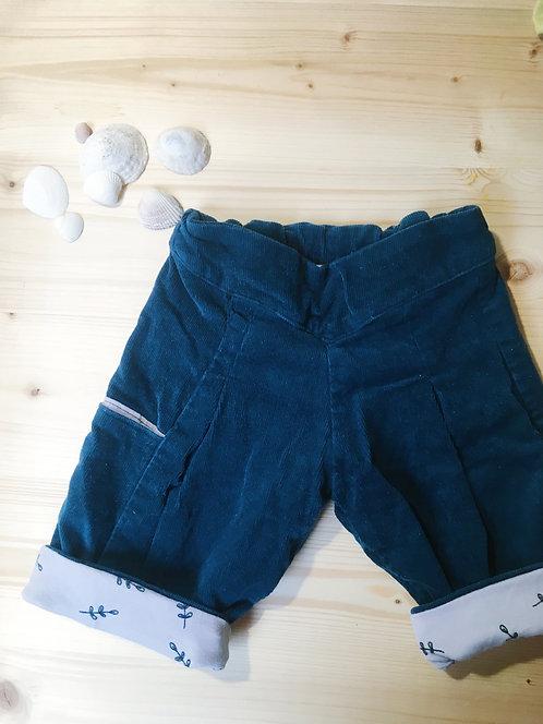 MORILLE - Le pantalon en velours