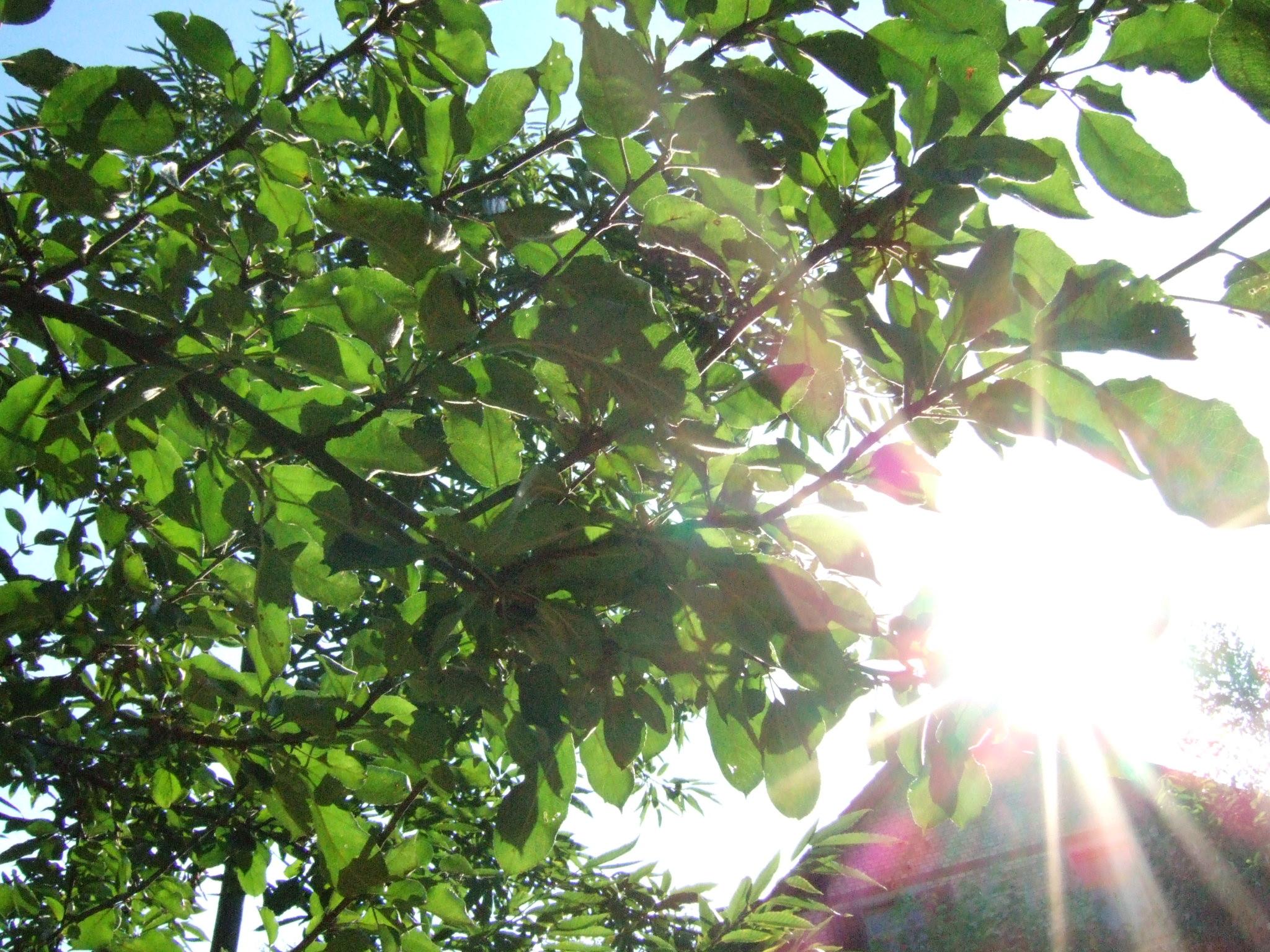 Energie du lumière