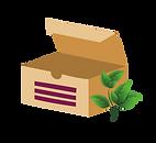 box-ecoresponsable-03.png