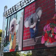 Outdoor Cinema Screen