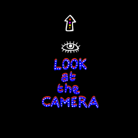 Animations1-LookAtTheCamera.png