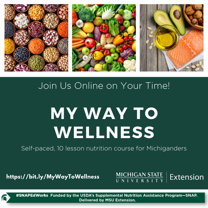 My Way to Wellness