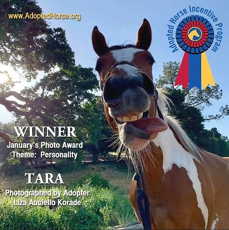 Tara wins v2.jpg