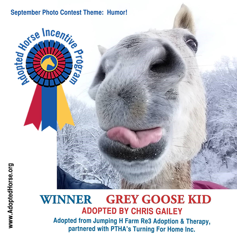 September winner Grey Goose with text.jp