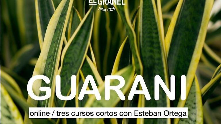 Cursos cortos de Guarani - Online