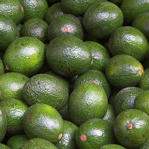 AVOCADO: THE BEST FRUIT TO ADD TO YOUR DIET