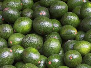 Macros Made Simple Part 2: Fats