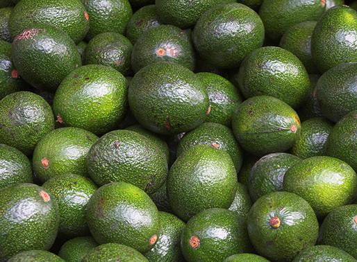 5 Amazing Health Benefits of Avocado!