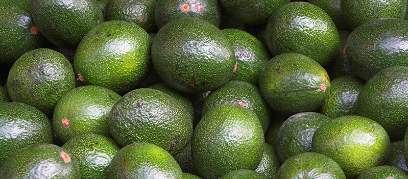 Pile of Avocados