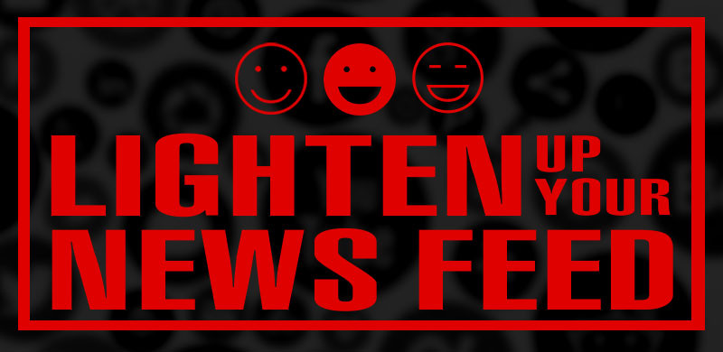 Lighten Up Your News Feed Social Media