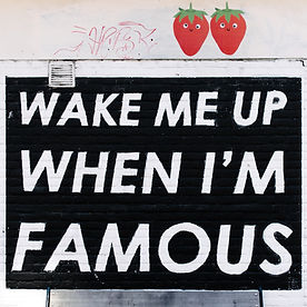 Wake me up when i'm famous image