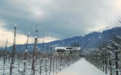 Einfahrt Haus Sackgut im Winter_edited
