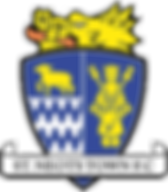 St_Neots_Town_F.C._logo.png