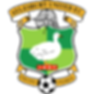200px-Aylesbury_United_FC.png