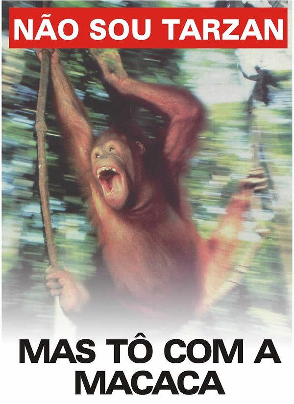 Macaca1.jpg