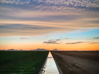Hundreds of Water Rights Will Be Abandoned in 2020:  How to Make Sure Your Right Isn't One of Them.