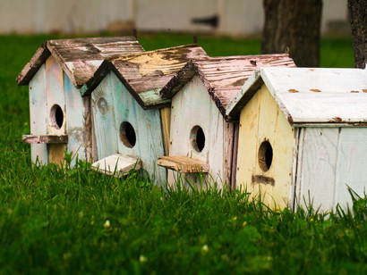 Advanced Fair Housing: Legal Update in  Grand Junction & by Webinar 10.09.18