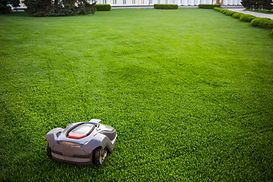 automatic lawnmower robot mower on grass