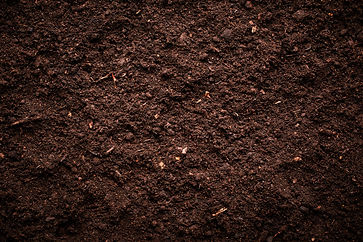 Soil texture.jpg