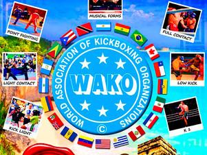 9no Campeonato Panamericano de Kickboxing