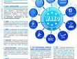 ¿Qué organismos internacionales dan fuerza y respaldo a WAKO IF?