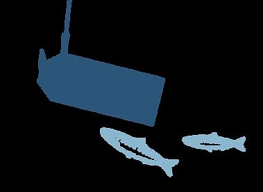 Fishsteria_Web_Background_Tag_fish-02.pn