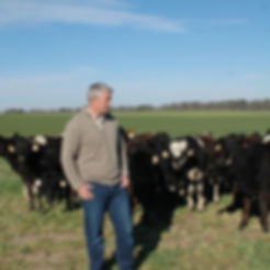 Farming. Dairy. Grassfed