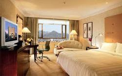 guestroom_deluxe1_view1