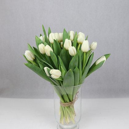 Tulipany klasyczne białe